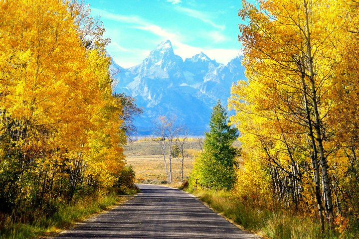 Fall with Tetons in background