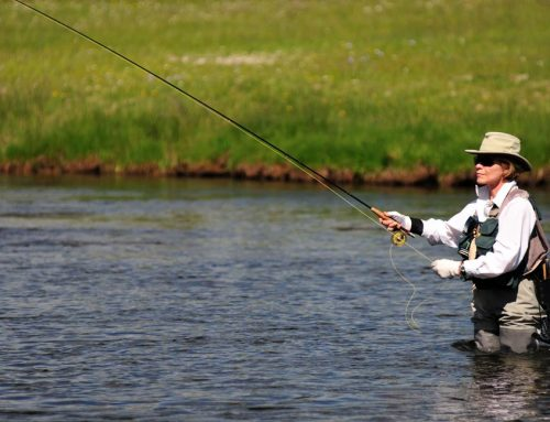 Fly-Fishing at Red Rock Ranch
