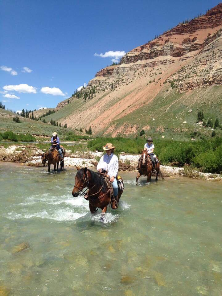 Horses crossing river